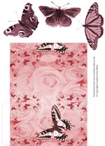 money wallet set butterflies & flora