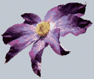 Clematis cross stitch design, Candice Crafts Cross Stitch Shop