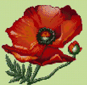 Poppy cross stitch design, Candice Crafts Cross Stitch Shop