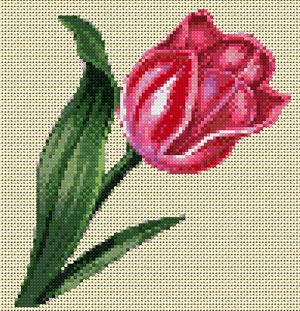 Tulip cross stitch design, Candice Crafts Cross Stitch Shop
